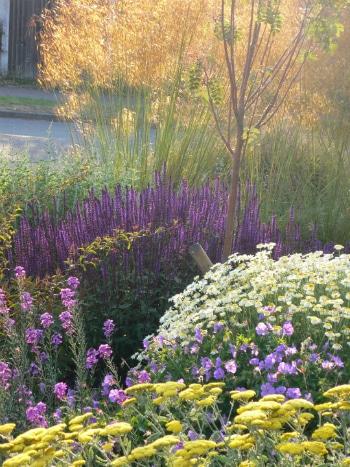 garden-maintenance-colchester