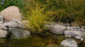 water-garden-stone-300x168